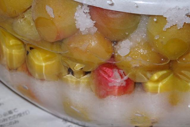 シソ 梅干し 理由 入れる に を 四畳半で作る梅干し~【4】赤紫蘇を入れる~その1